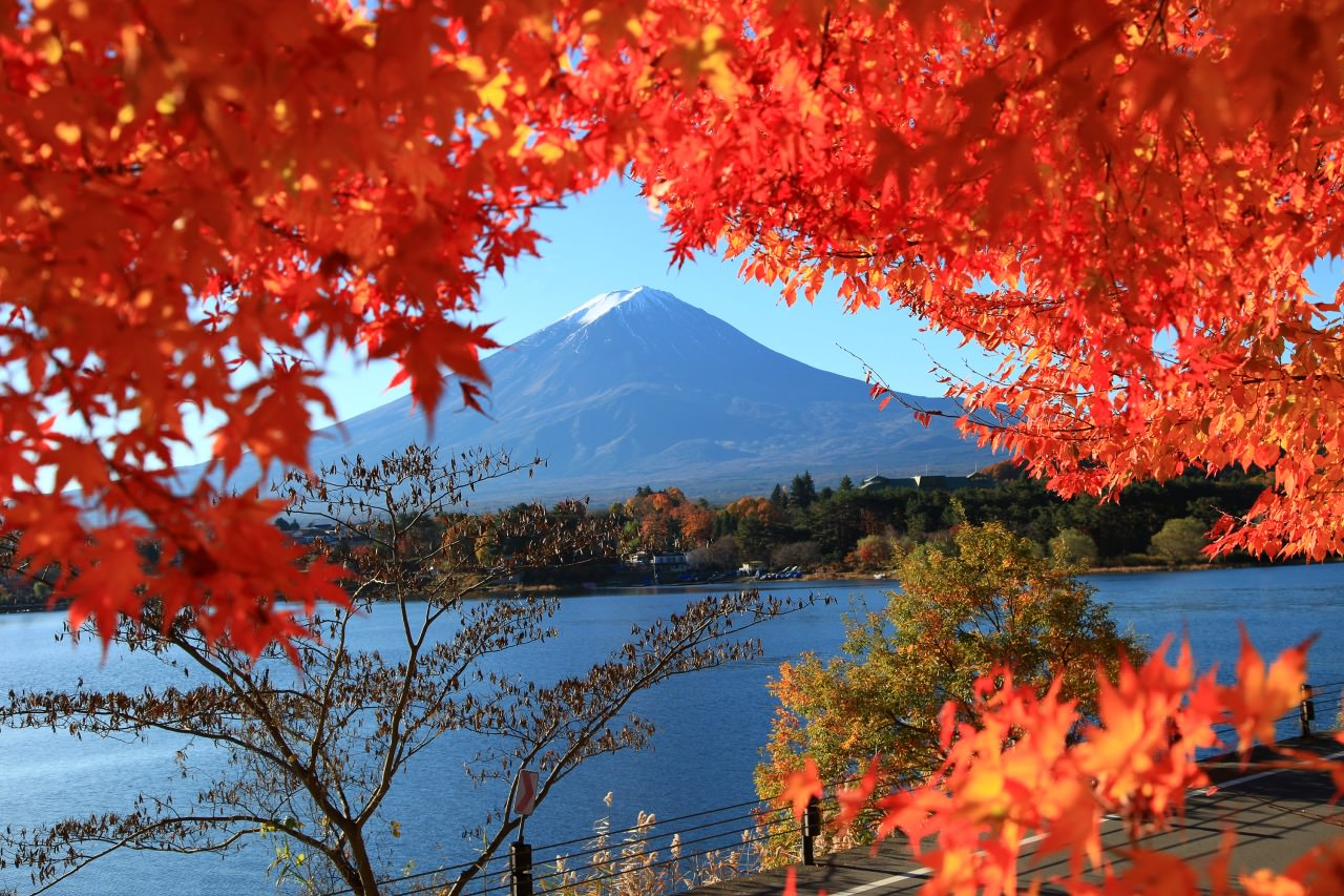 The best views of Mount Fuji can be seen from the northern shores of lake Kawaguchi.