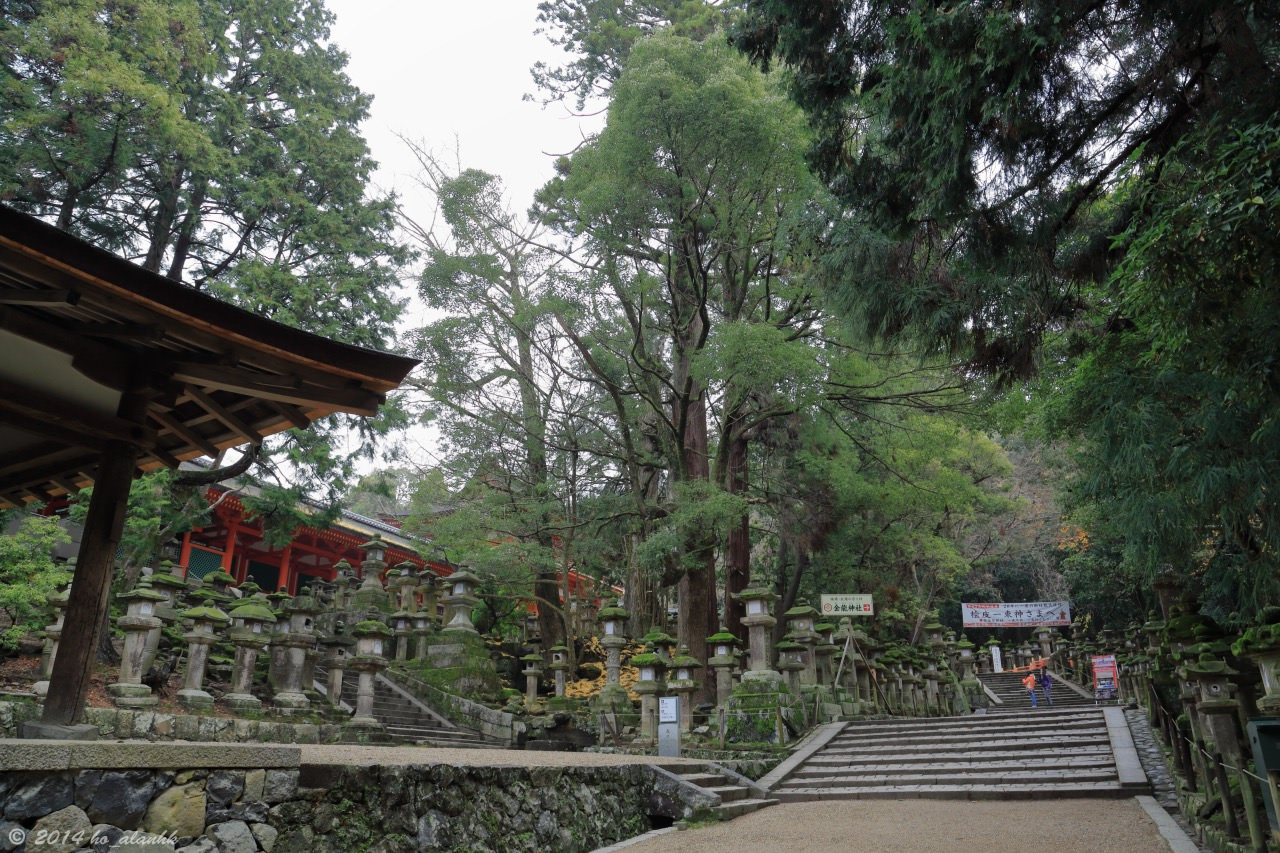Kasuga Grand Shrine