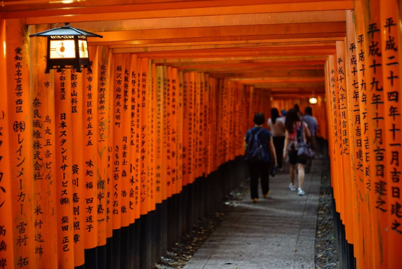 Visitors will marvel the many torii in different sizes