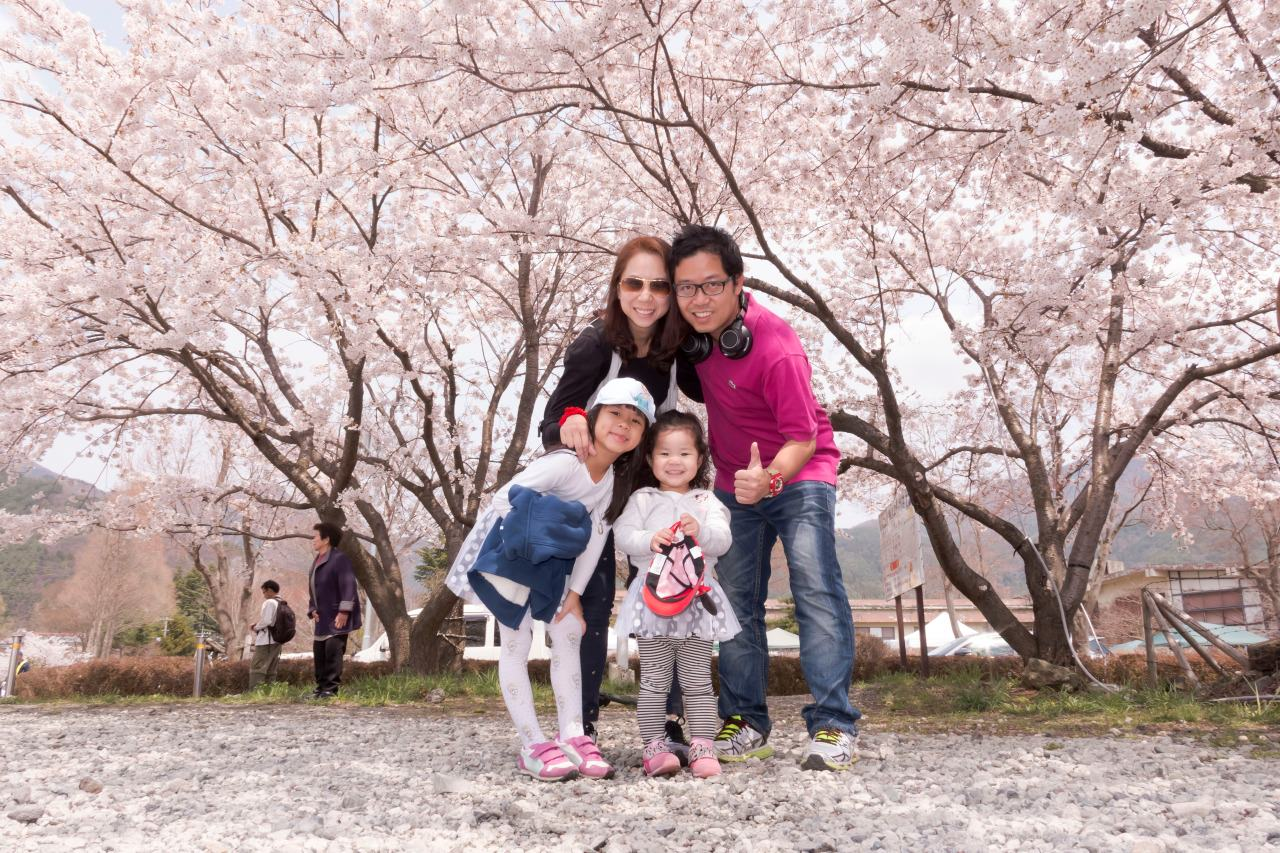 Nice Time with Family, Sakura is awesome! really beautiful days.  Wanna go back next year!