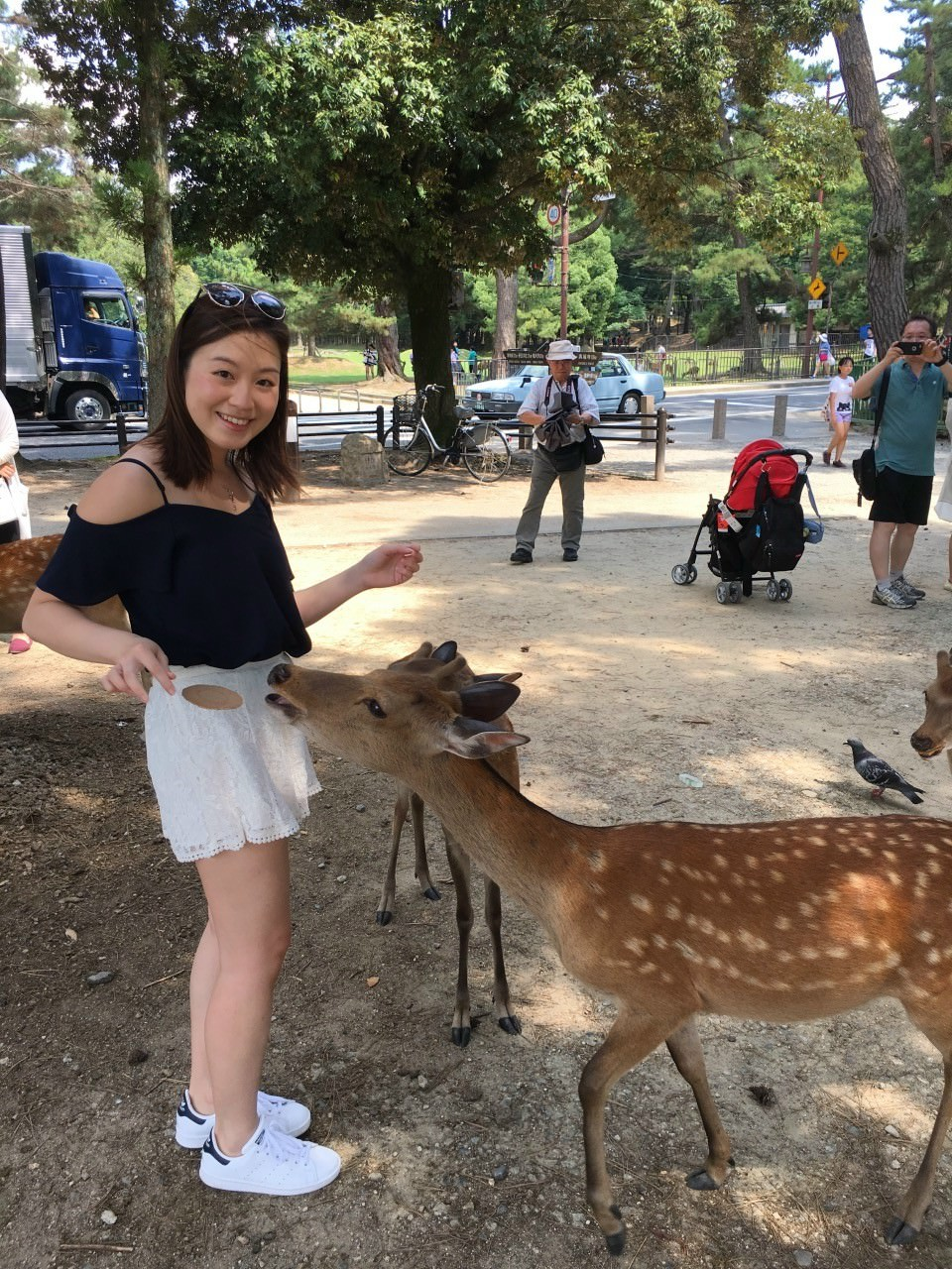 The deer was eager to eat our flying Senbei