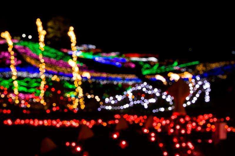 Very romatic Christmas Illumination at 国営讃岐まんのう公園, amazing.