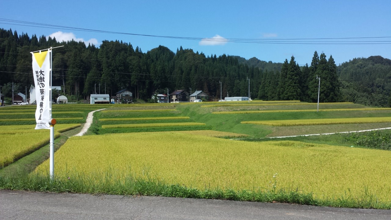 I visited the Echigo-Tsumari Art Field in Niigata and gained an unforgettable satoyama experience.