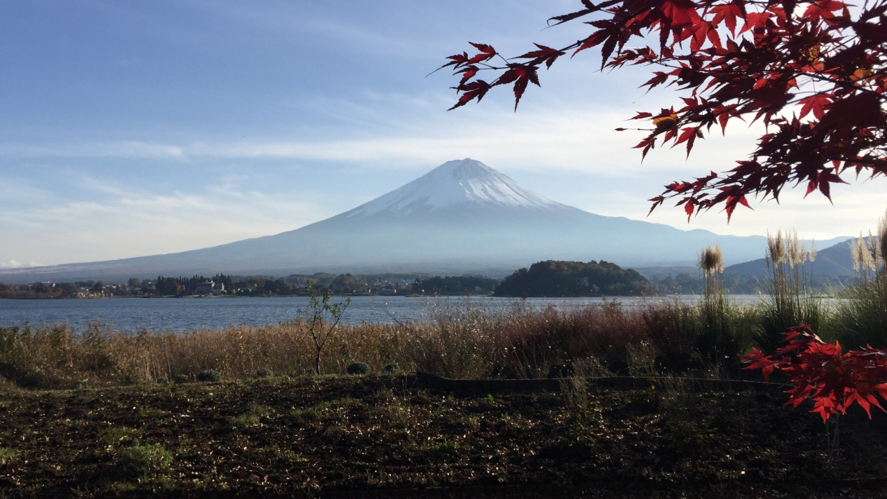 Beautiful view of Mount Fuji from Kawaguchiko in Autumn.