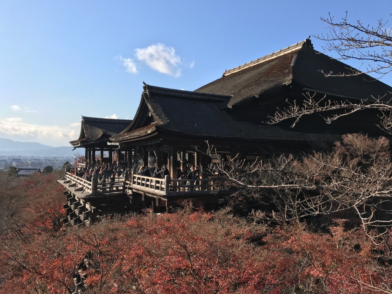 You will be touched by the view of Kiyomizu Temple in Koyto, with the red leaves around!!