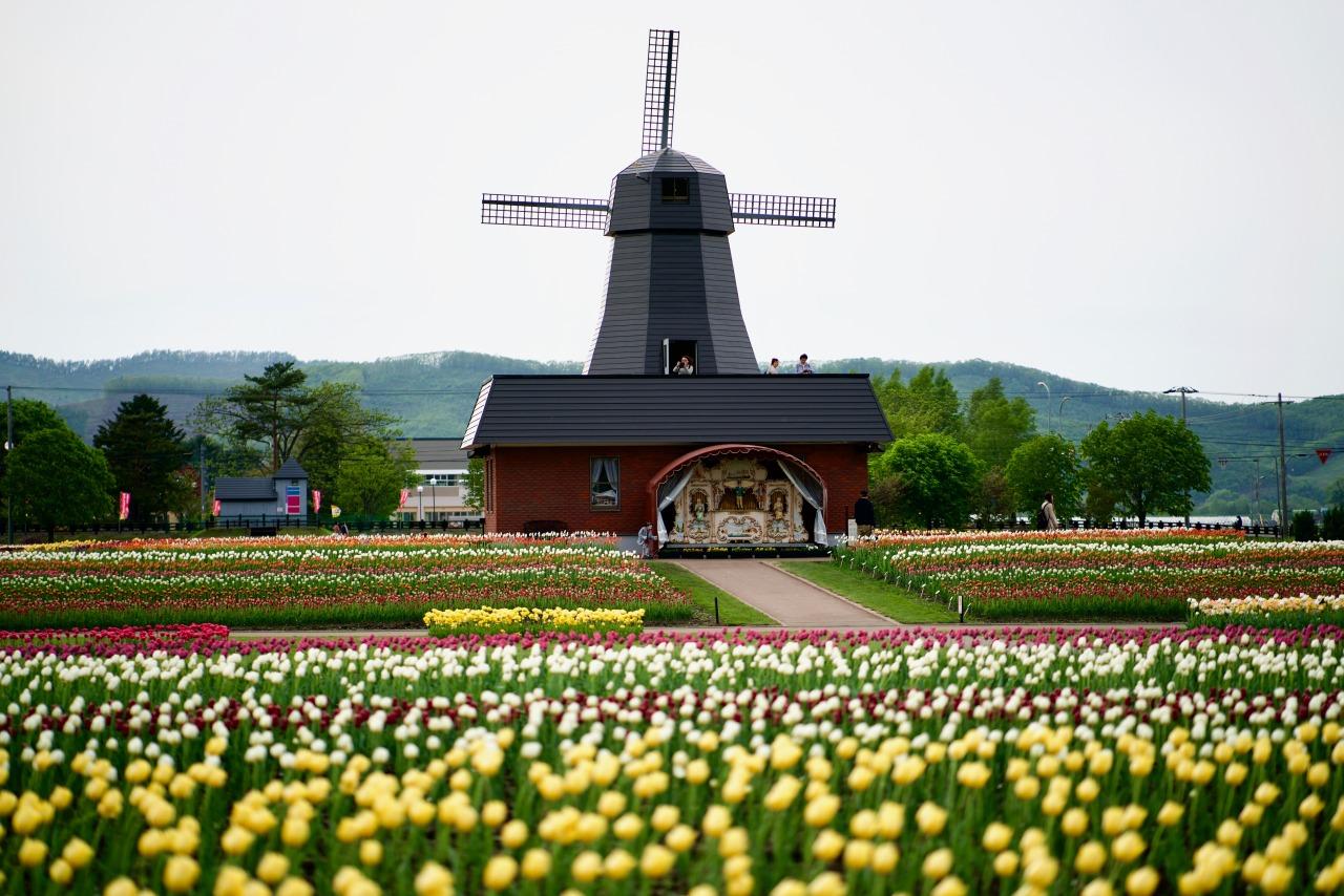 Kamiyubetsu Park