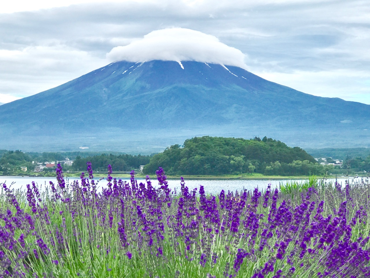 Beautiful Fuji mountain.