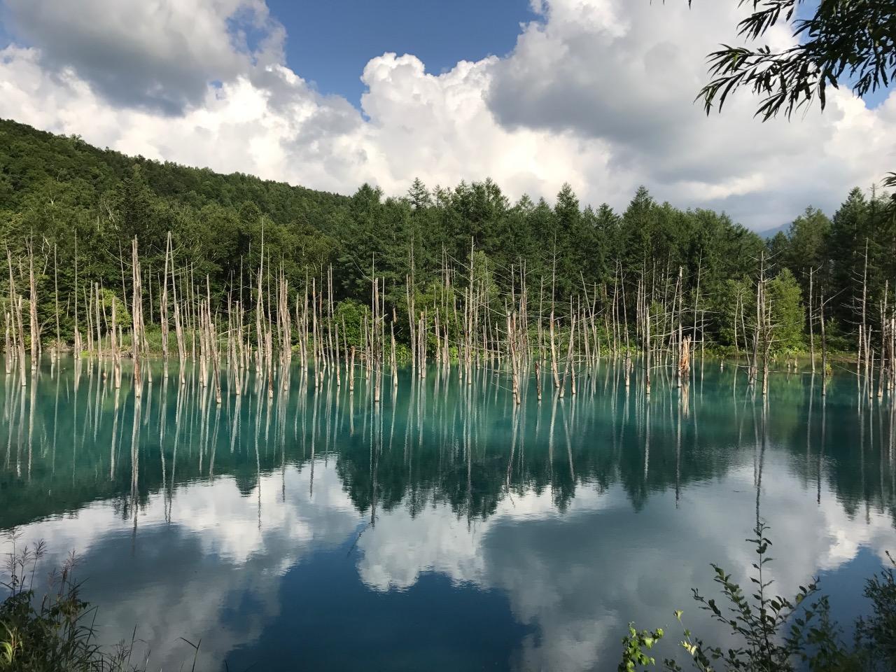 Blue pond-Biei