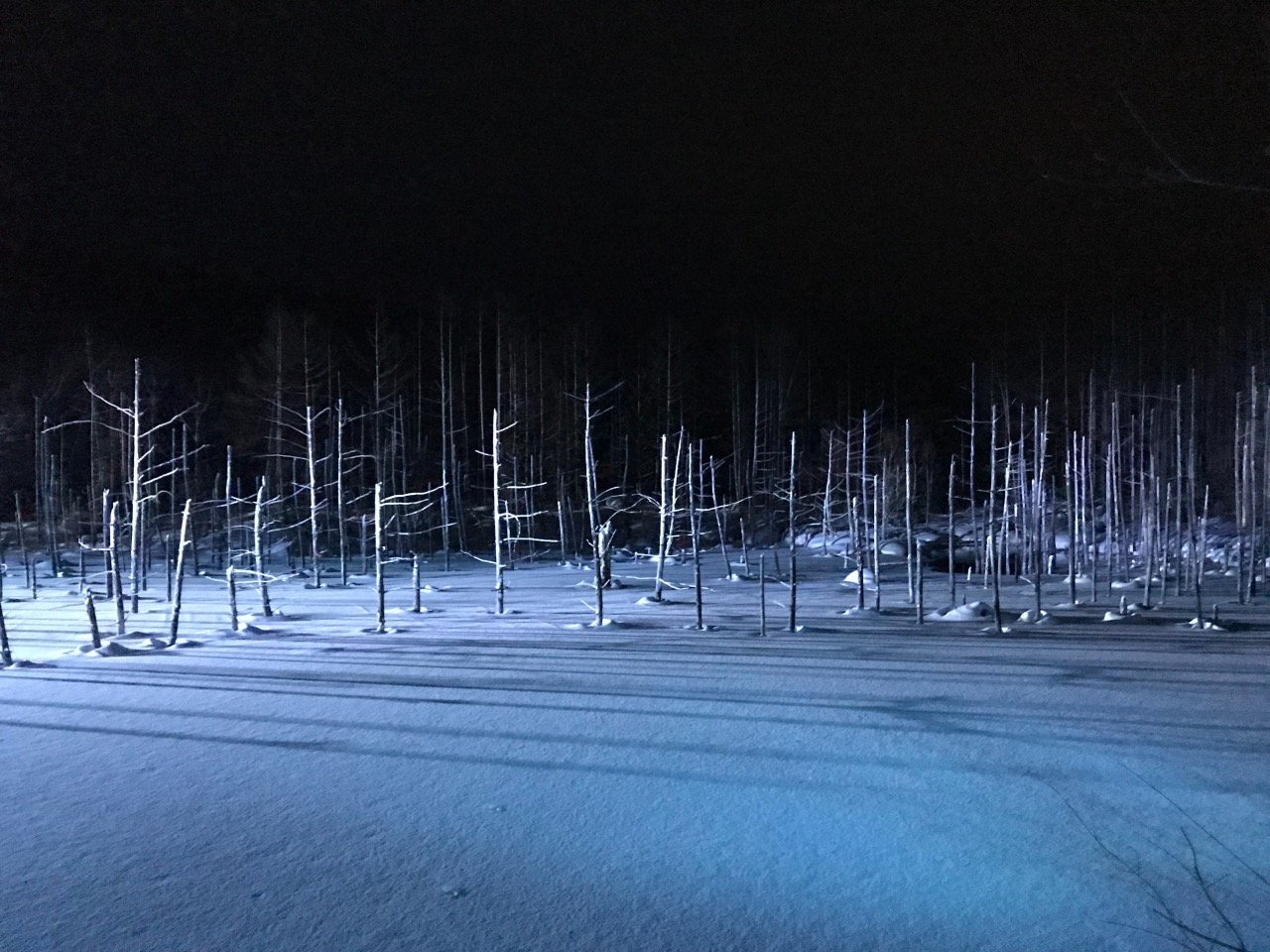 Blue pond in snow under spot lights.