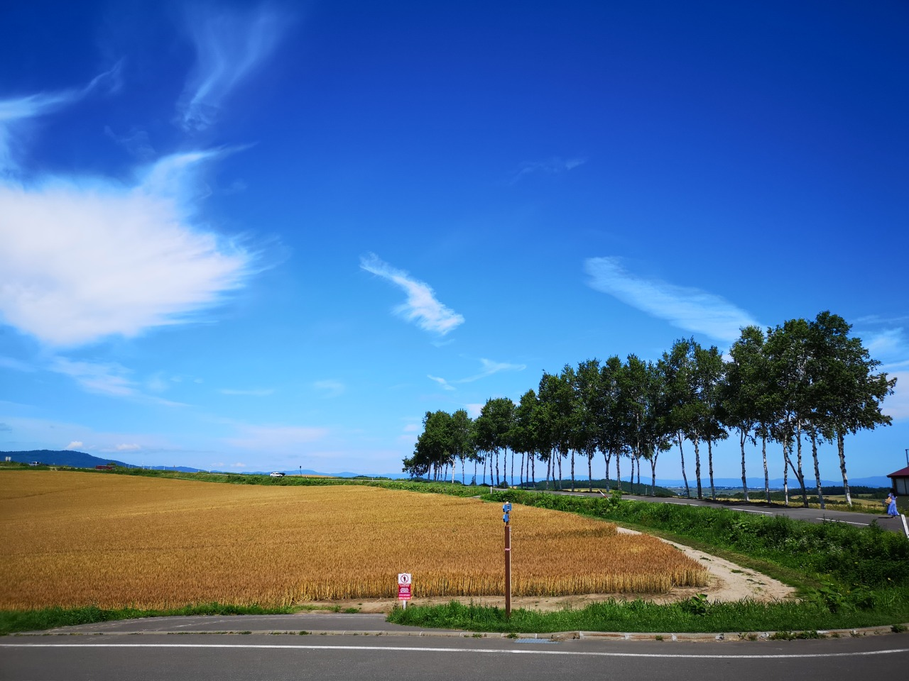Furano farm