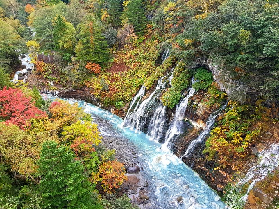Memorable falls