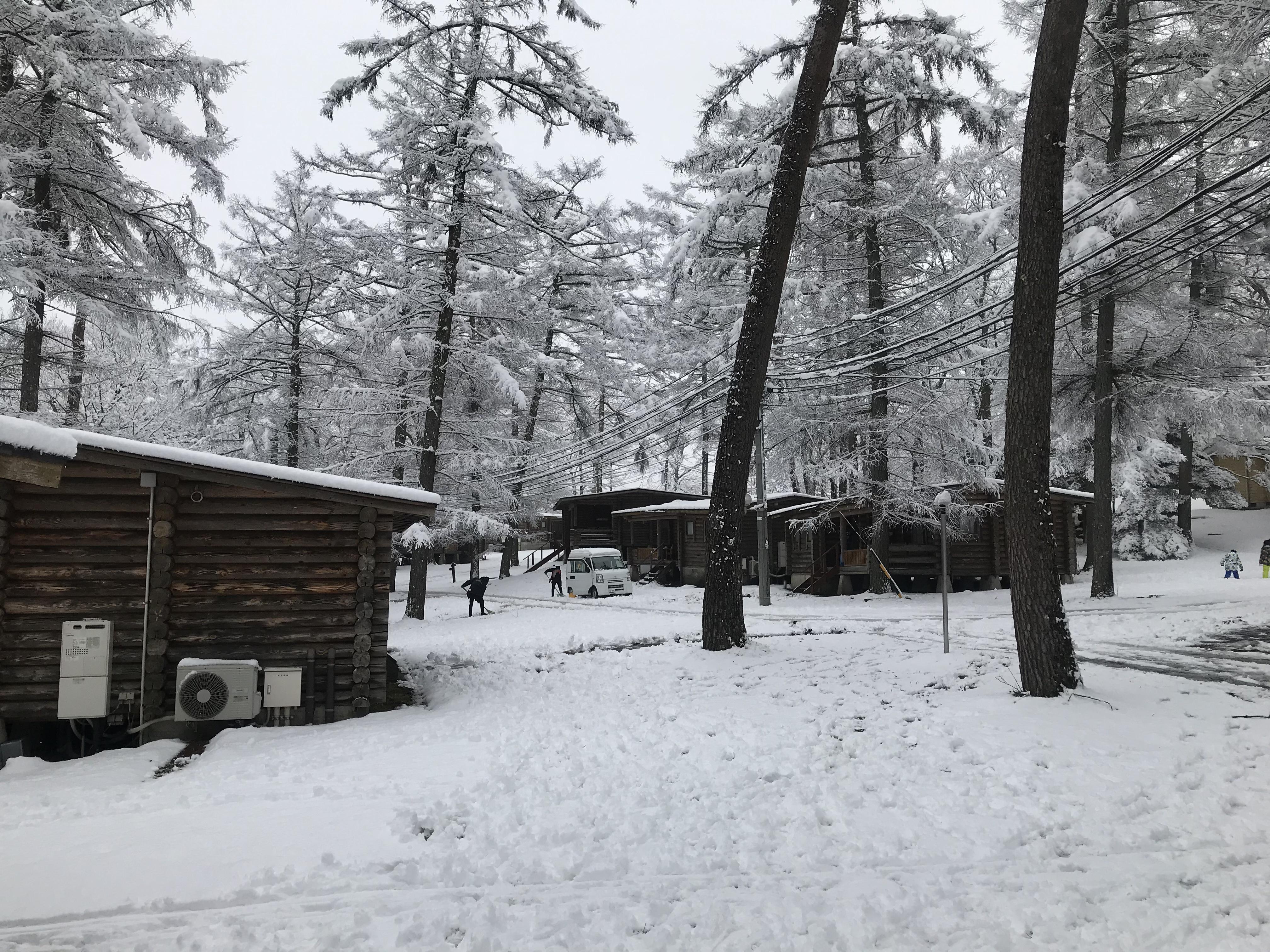 天朗氣清的白雪美景